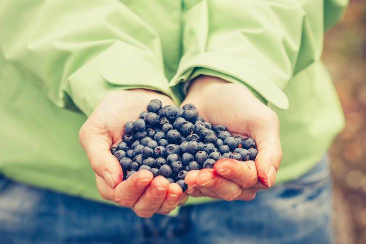 To håndfuller med blåbær