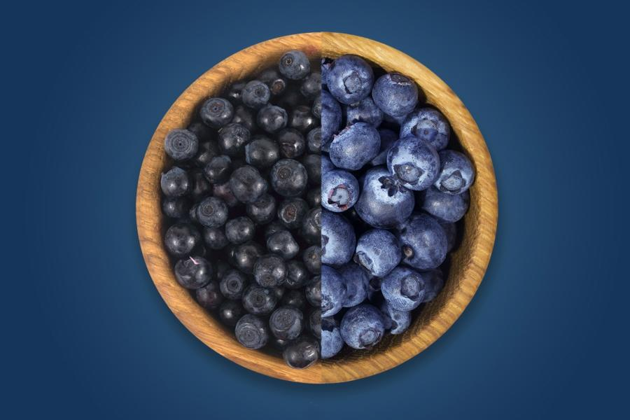 var kan man köpa svenska blåbär