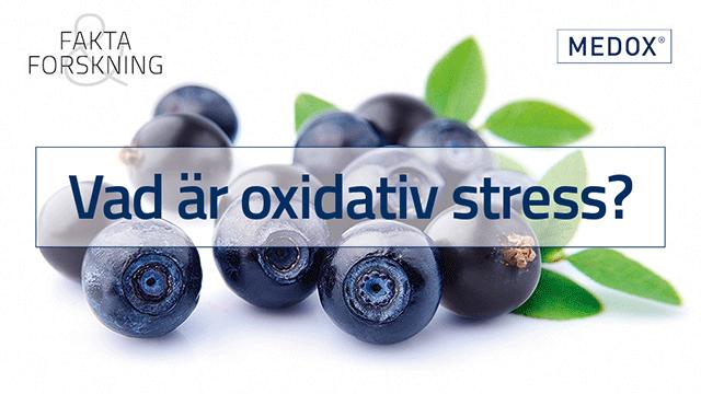 oxidativ stress betyder